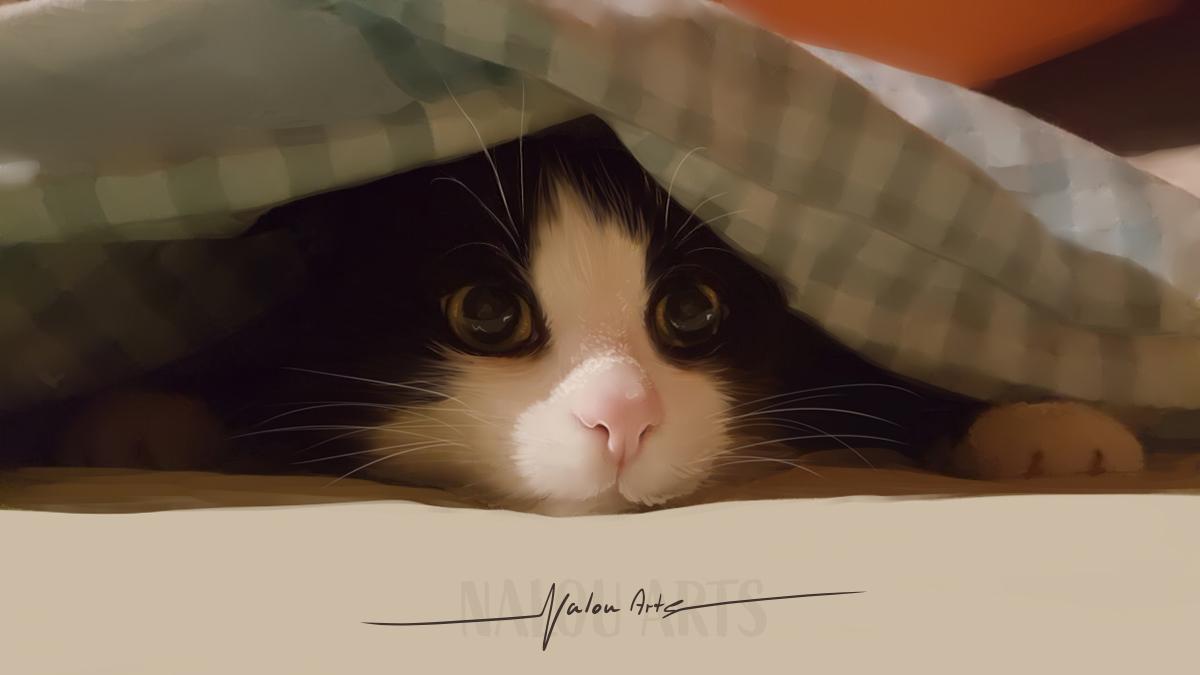 nalou_arts_cat
