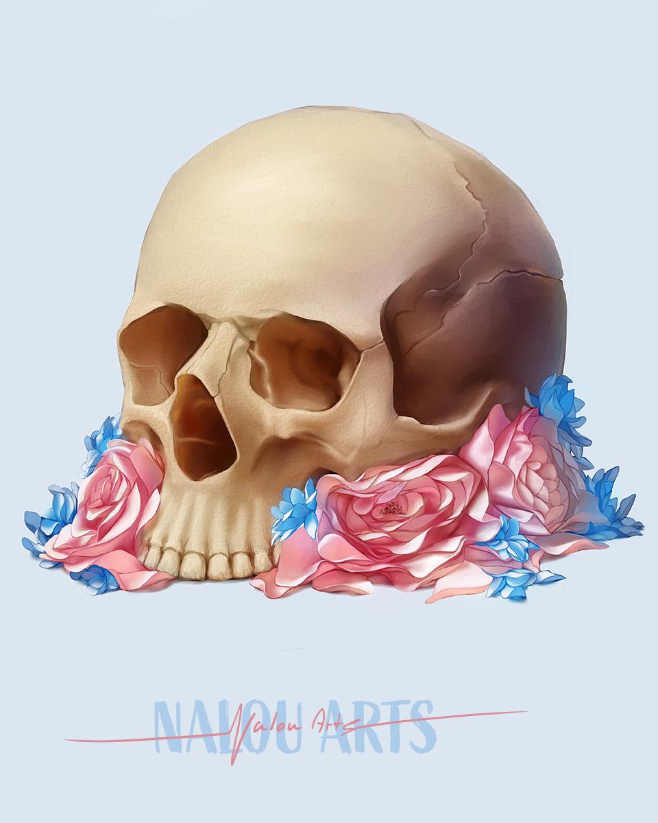 nalou_arts_skull